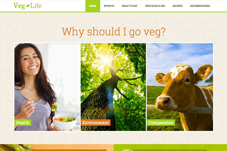 Veg Life Web Project